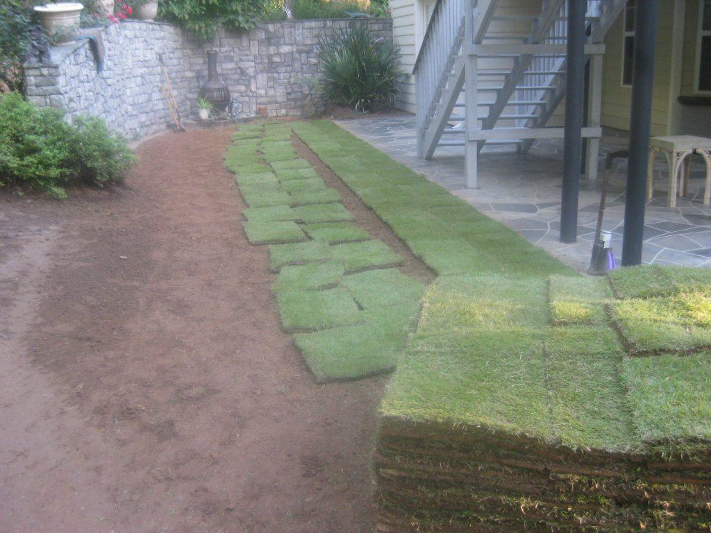 turf seed grass sod installation