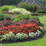 landscape design projects - McPlants, IMG_7501