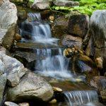 water features installation McPlants, -7870