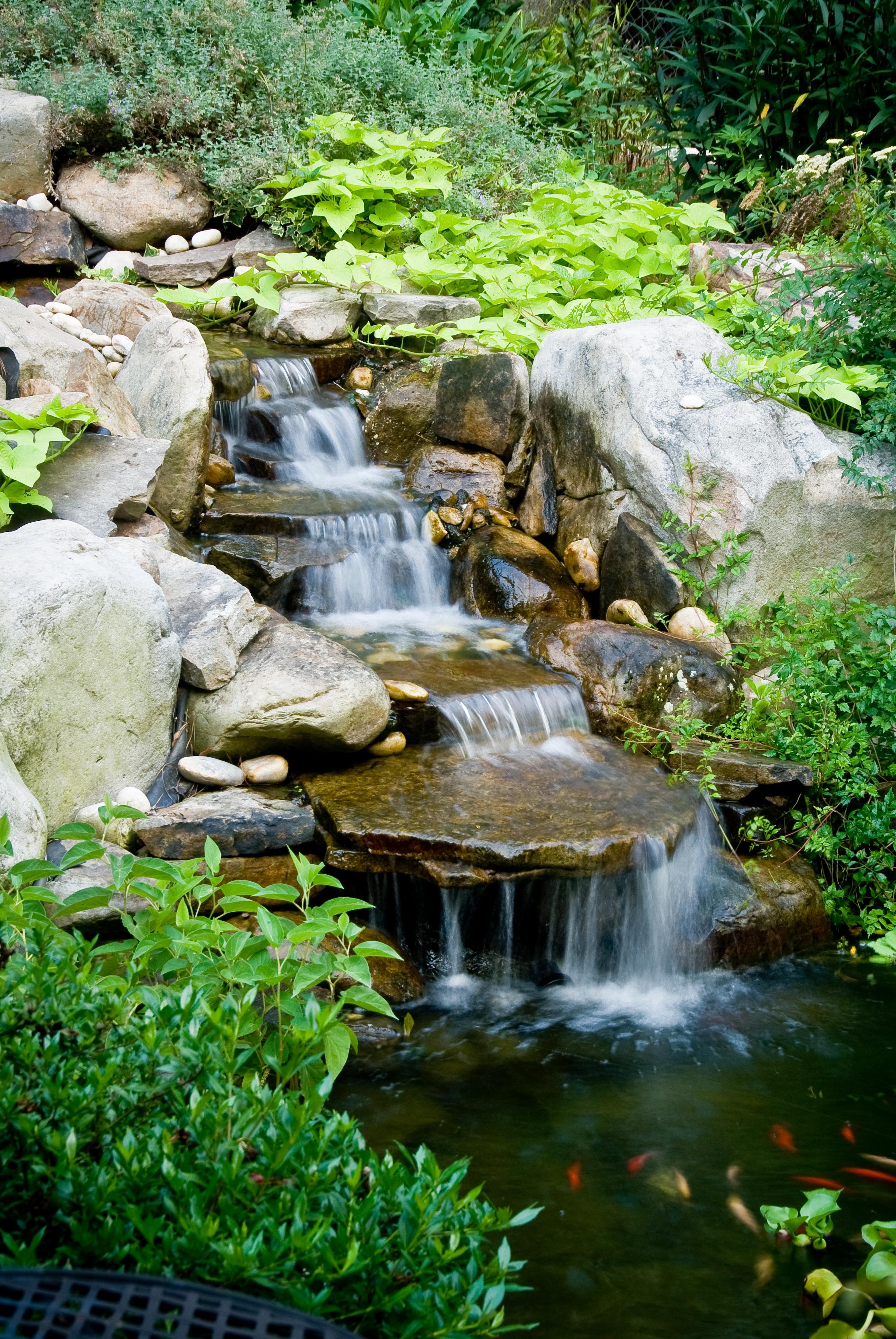 landscape water features - McPlants