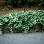 Rock stone retaining walls installation contractor - McPlants, -7893