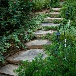 Stone walkway installation contractor - McPlants -7897
