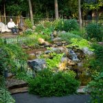 water features installation McPlants,-7922