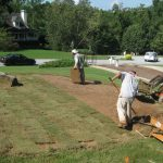 Turf grass sod installation contractor McPlants, IMG_0411