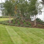 Turf grass sod installation contractor McPlants, IMG_0745
