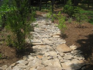 Water Drainage Solutions Landscaping - McPlants, IMG_4005