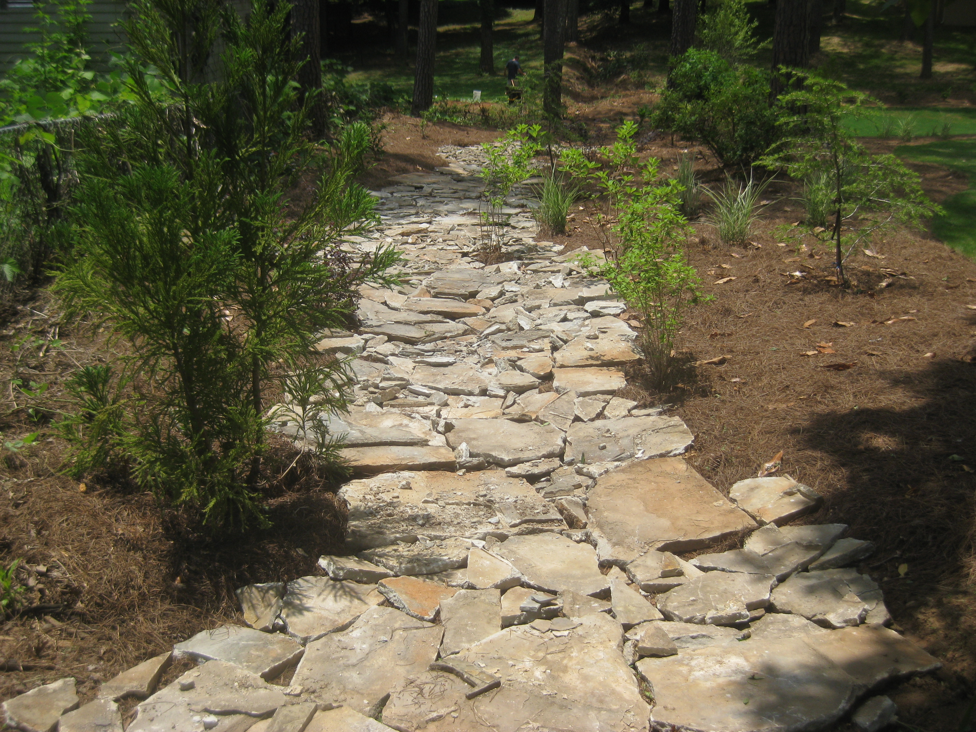 Water Drainage Solutions Landscaping Mcplants