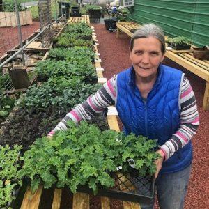 Judy Cunningham Country Gardens Farm